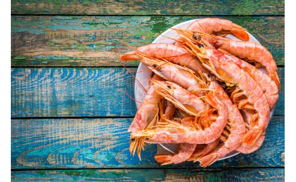 Shrimp Products