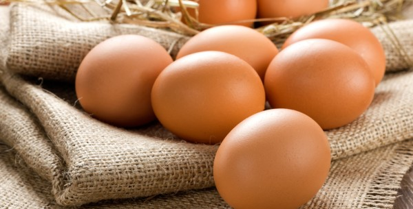 Free Range Whole Egg Powder (edible)